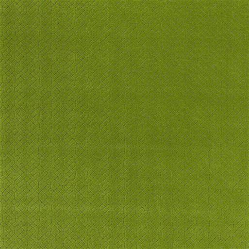 Riolo Grass