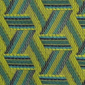 Tribu Cactus