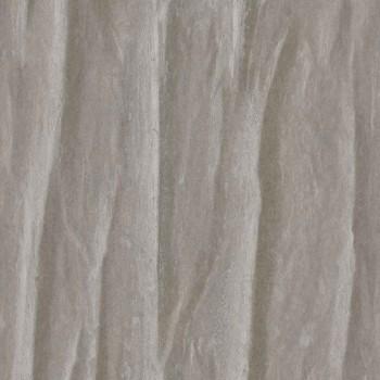 Symbiose gris foncé