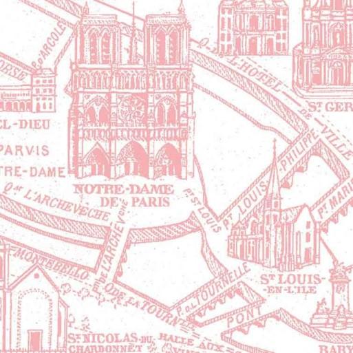Panoramique Plan de Paris monumental rose