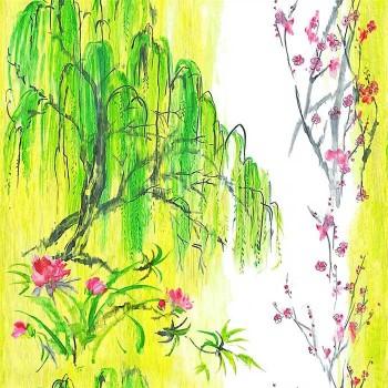 Tissu Willow Flower Acacia