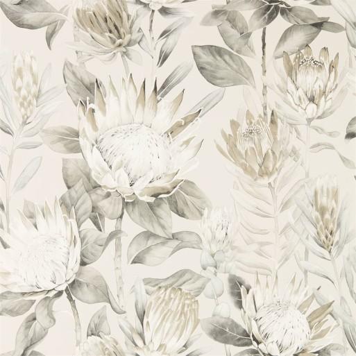 King Protea Linen / Mica