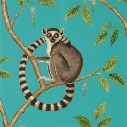 Ringtailed Lemur Teal