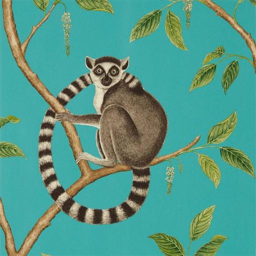 Ringtailed Lemur Teal