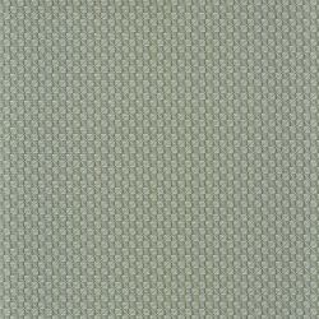 Trenza vert de gris