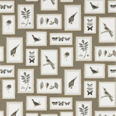 Picture Gallery Taupe/Sepia