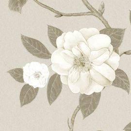 Christabel Ivory/Silver