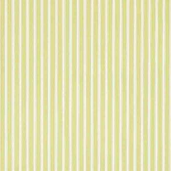 New Tiger Stripe Linden/Ivory