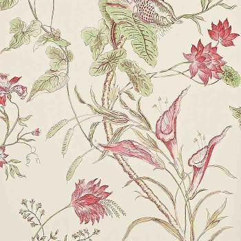 Mauritus Rose/Cream