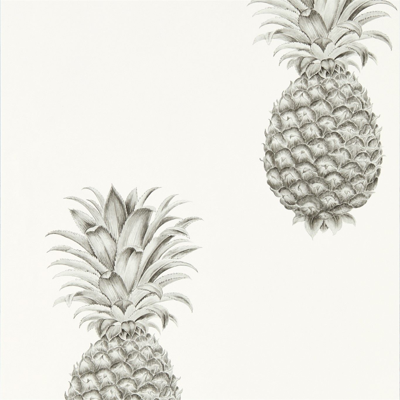 Pineapple Royale Silver / Ivory