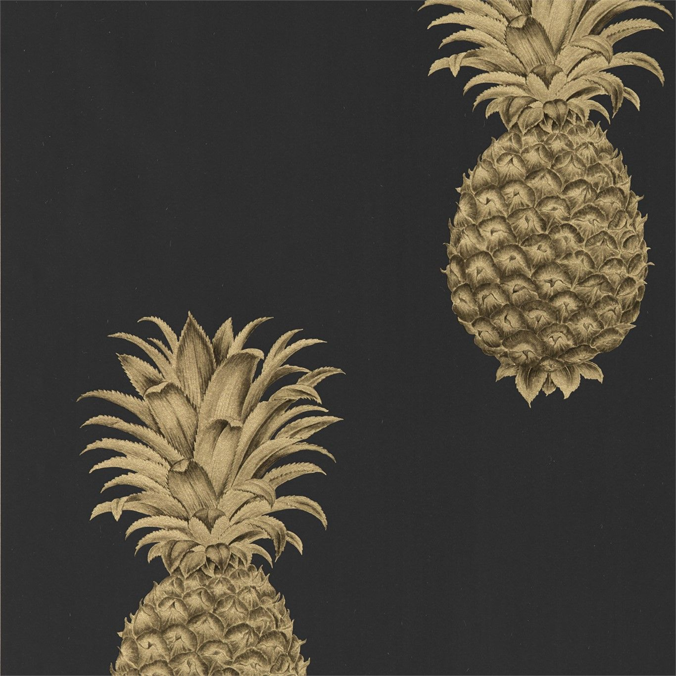 Pineapple Royale Graphite / Gold