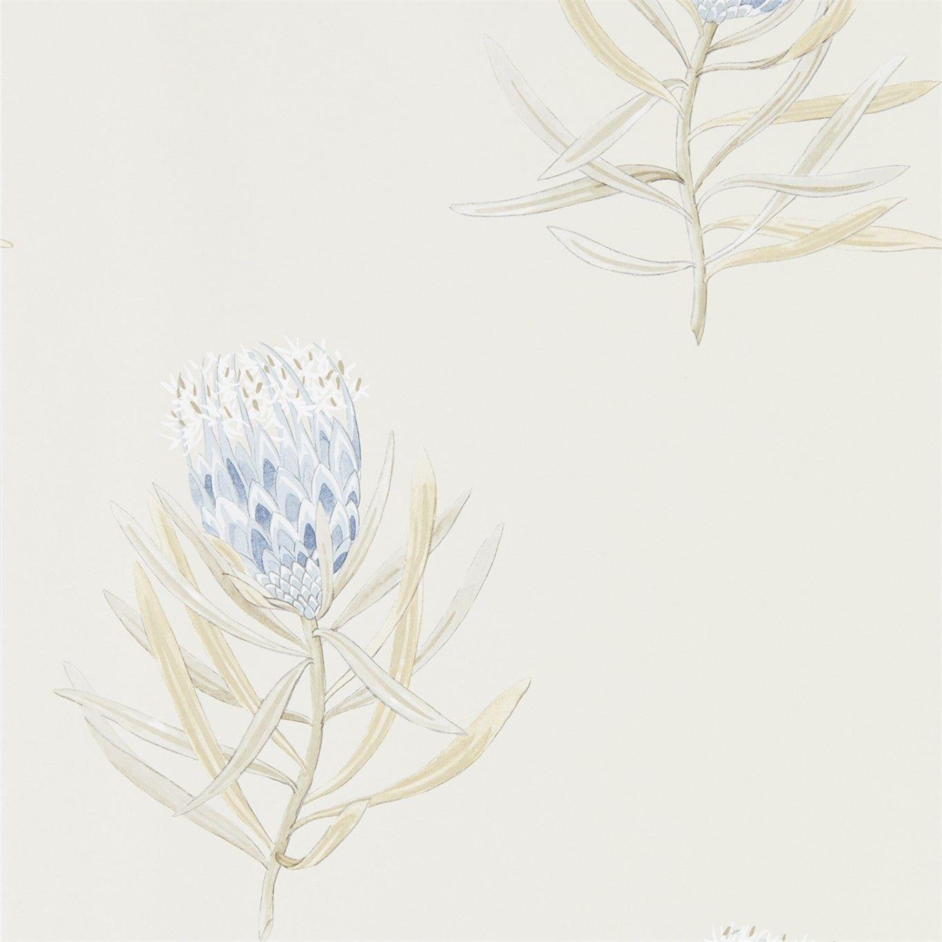Protea Flower China Blue / Canvas